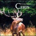 Cerfs - CD (356269000276)