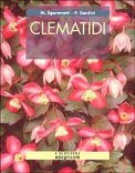 Clematidi