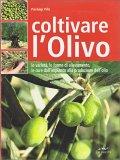 Coltivare l'Olivo — Libro