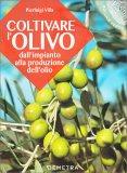 Coltivare l'Olivo - Dall'Impianto alla Produzione dell'Olio