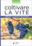 Coltivare la Vite - Tradizione, Innovazione, Sostenibilità - Libro