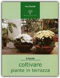 Coltivare Piante in Terrazza