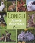 Conigli — Libro