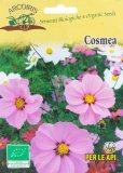 Semi di Cosmea