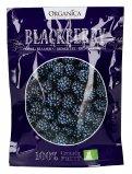 Crunchy Fruit Blackberry - More Croccanti Disidratate