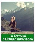 Detox e yoga nella natura