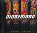 Didgeridoo Dimensions