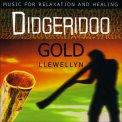 Didgeridoo Gold