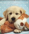 Dinky Dogs - Calendario 2018
