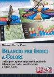 eBook - Bilancio per Indici a Colori