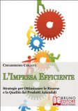 eBook - L'impresa Efficiente