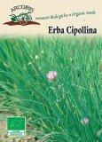 Semi di Erba Cipollina 5 gr.