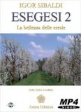 Video Streaming - Esegesi 2 - On Demand