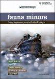 Fauna Minore