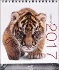 Felini - Calendario da Tavolo 2017