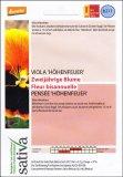 Fiore Biennale Viola del Pensiero - b211