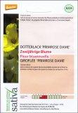 Fiore Biennale Violaciocca Primrose Dame - b224