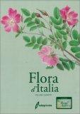 Flora d'Italia - Vol. 4 — Libro