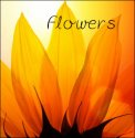 Flowers — CD