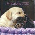 Friends - Calendario 2018