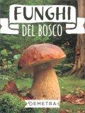 Funghi del Bosco — Libro
