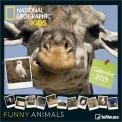 Funny Animals - Calendario 2019