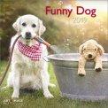 Funny Dog - Calendario 2019