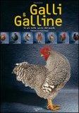 Galli e Galline — Libro