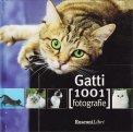 Gatti - 1001 Fotografie - Libro