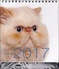 Gatti - Calendario da Tavolo 2017