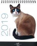 Gatti - Calendario da Tavolo 2019