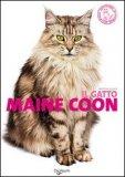 Il Gatto Maine Coon