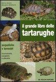 Il Grande Libro delle Tartarughe — Libro