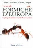 Guida alle Formiche d'Europa — Libro