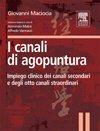 I Canali di Agopuntura   - Libro
