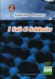 I Sali di Schussler  - DVD