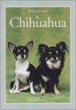Il Chihuahua — Libro