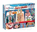 focus Junior - Il Corpo Umano