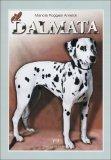 Il Dalmata