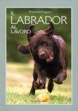 Il Labrador al Lavoro  - Libro