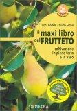 Il Maxi Libro del Frutteto - Libro