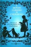 Il Mondo Curioso di Calpurnia — Libro
