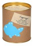 Infuso Drenante - Barattolo Piccolo - 15 infusi da 2 g