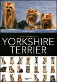 l'Enciclopedia dello Yorkshire Terrier