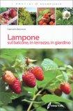 Lampone sul Balcone, in Terrazzo, in Giardino - Libro
