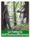 Lo Spirito degli Alberi. Seminario di incontro e comunicazione con gli alberi. II Edizione