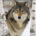 Lupi - Calendario 2018