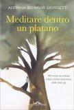Meditare Dentro un Platano - Libro