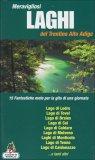 Meravigliosi Laghi del Trentino Alto Adige  - Libro