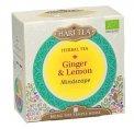 Mindscape Ginger & Lemon - Tisana Zenzero e limone